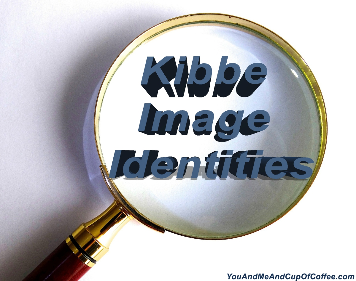 6 Possible Reasons Why You Can't Find Your Kibbe Image ID